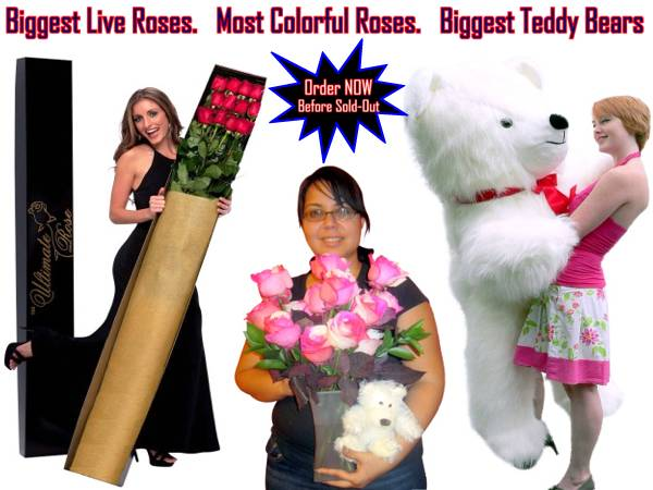 1-Stop Valentine's Day Shopping at BigPlush.com: The biggest teddy bears (8-feet tall), the biggest live roses (6-feet tall) and the most colorful roses (Rainbow Roses) are ALL under ONE ROOF here at BigPlush.com! Order now for Valentines Day 2013!