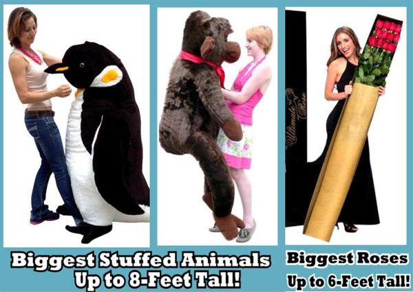 BigPlush.com has the largest stuffed animals and biggest live roses in the world!