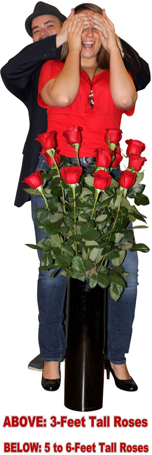 Order these giant 3-feet tall live roses with matching vase NOW!