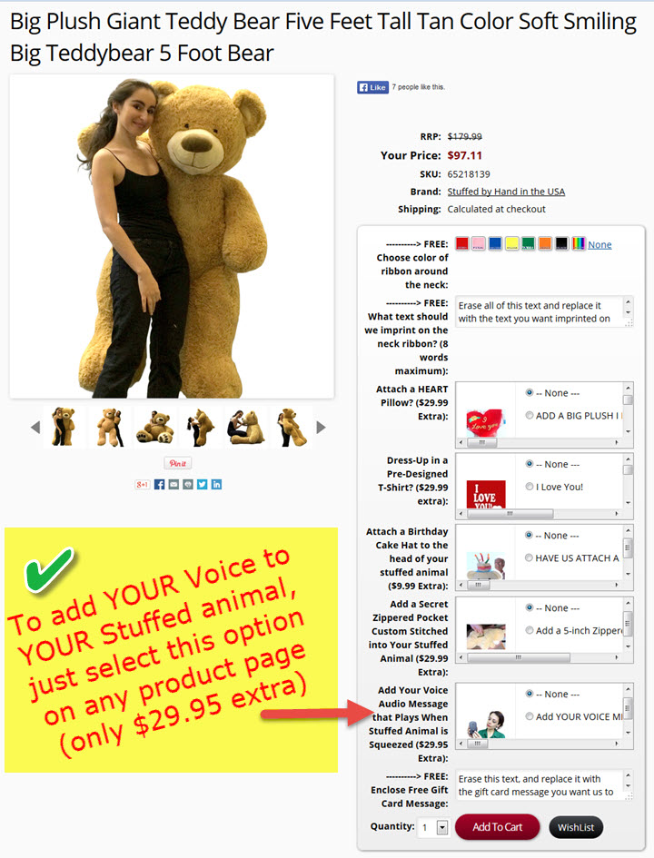 How to ADD YOUR OWN VOICE to any Big Plush stuffed animal